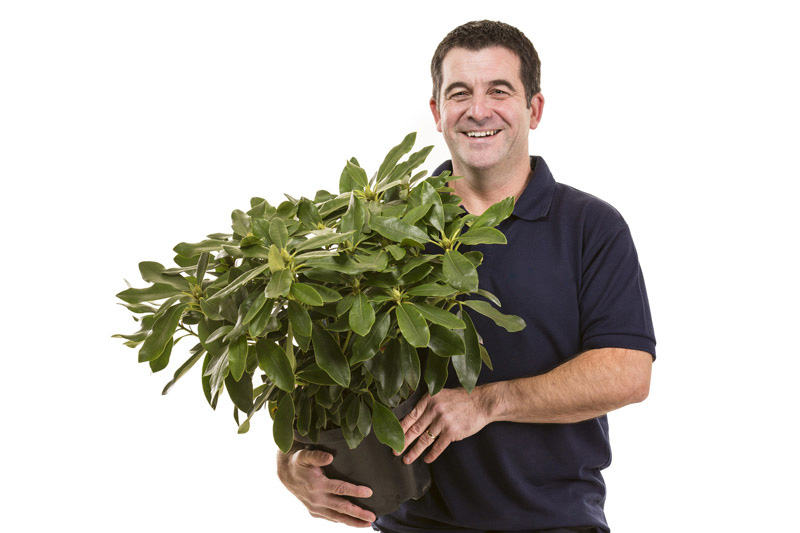 Paul Wallace holding a plant